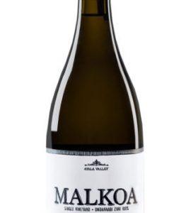 Astobiza Malkoa