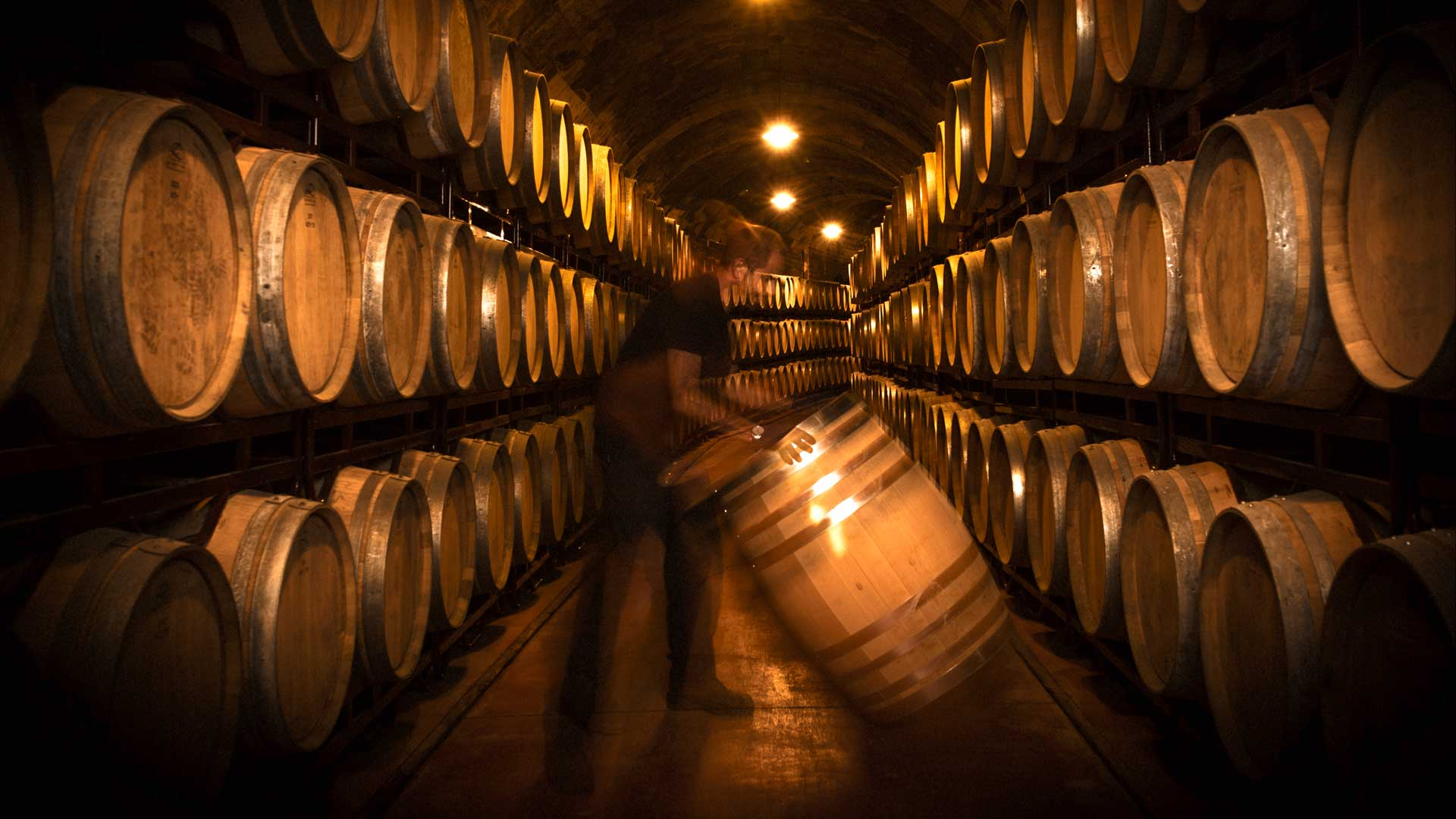 bodegas vinicola real barrel room