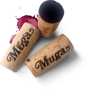 meilleurs vins de la Rioja