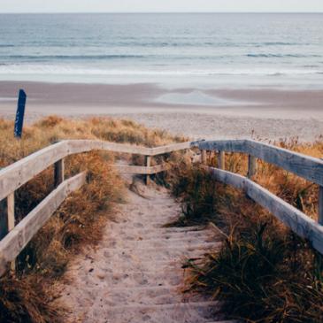 Vinos para el verano: Los 5 imprescindibles