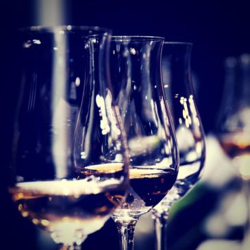 Copas de vino: ¿Cuáles son las mejores?