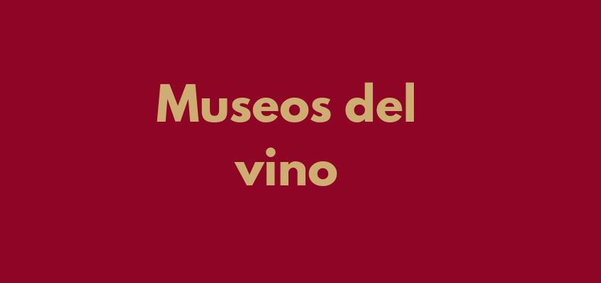 Museos del vino: Los 4 museos que debes visitar