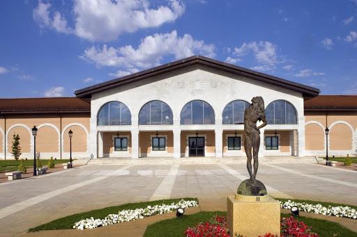 musée des bodegas
