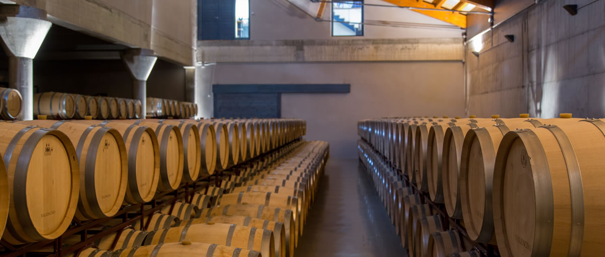 bodegas valenciso barrel room