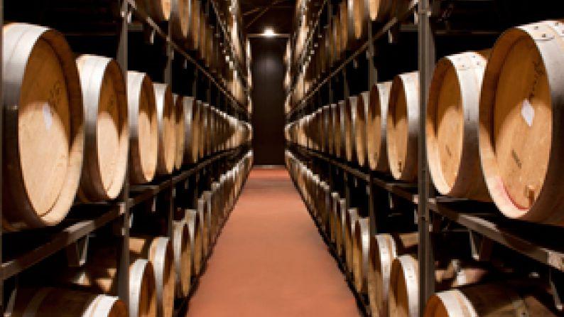 wineries palacios remondo barrel room