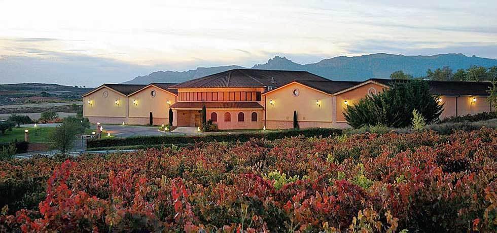 Domaine viticole Fernandez de Pierola