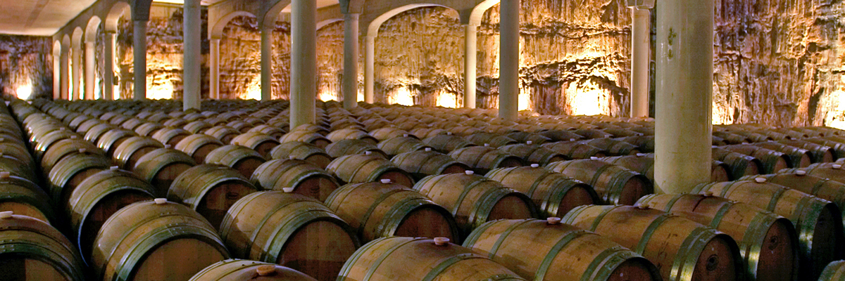 bodegas castillo de mendoza barrel room