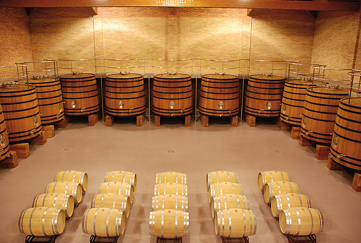 wineries seignio de villarrica barrel room